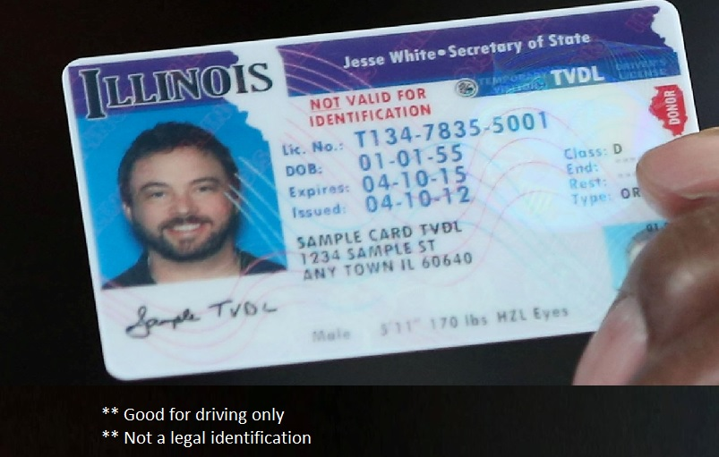 Illinois temporary drivers license
